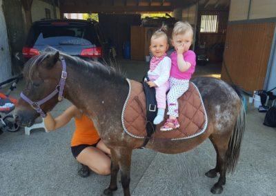 2 enfants sur un poney