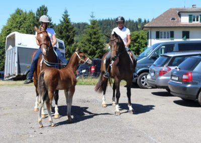 3 chevaux et 2 personnes