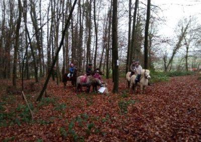 groupe de jeunes sur leurs poneys