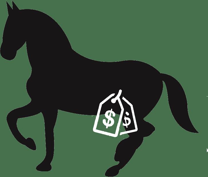 cheval vente