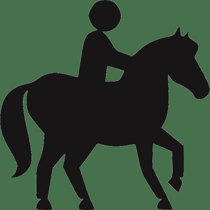 poney balade